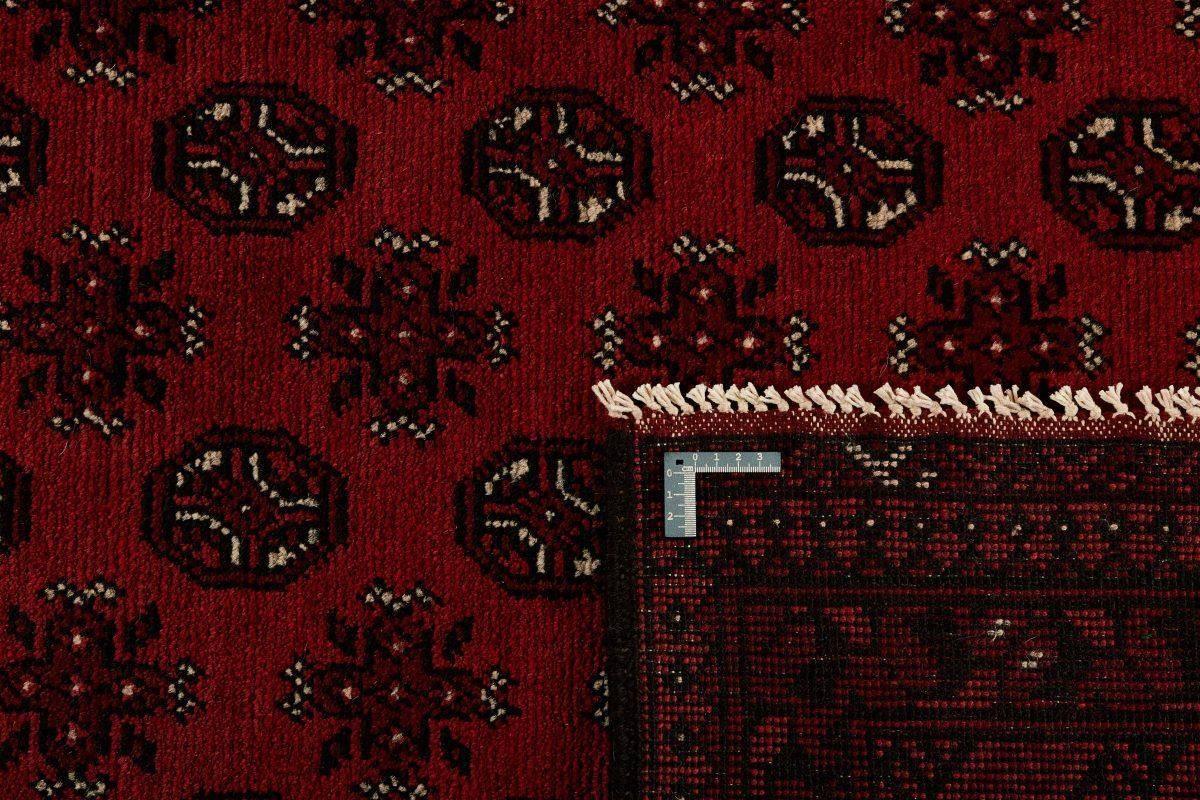 Dywan  Aktscha 1398124 200x283cm