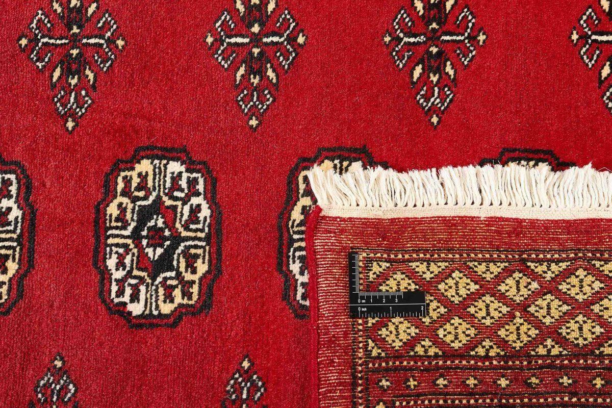 Dywan  Pakistan Bokhara  1381714 168x249cm